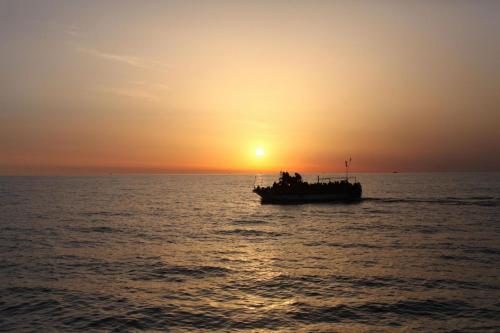 Immigrati 41 muoiono in naufragio a trapani sbarcano solo in 4 blitz quotidiano - Finestre pensione 2015 ...