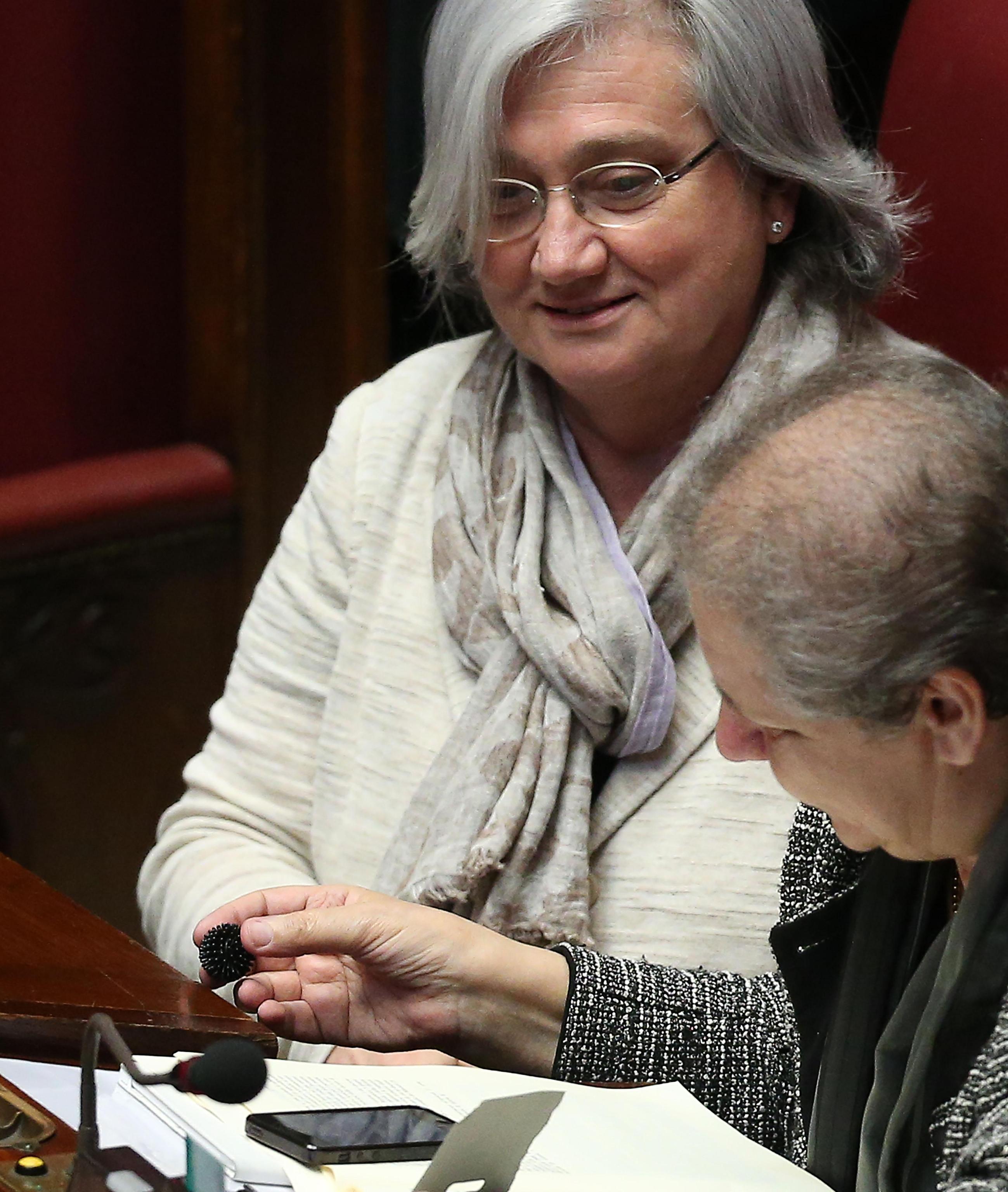 Italicum deputati pd usano palline per i gatti per for Deputati pd