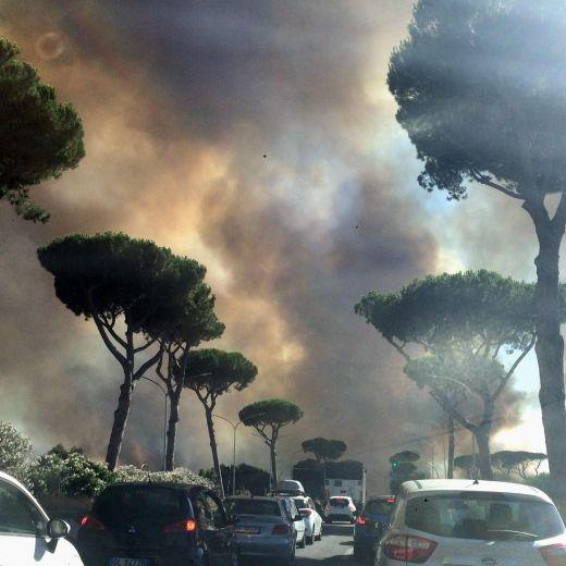 A Roma brucia la pineta di Castel Fusano. Arrestato un uomo