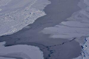 Antartide, si stacca iceberg Larsen C: è grande quanto la Liguria, allerta climatica globale