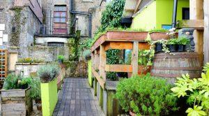 Bonus verde: cura e rifacimento terrazze e giardini, il 36% te lo ...