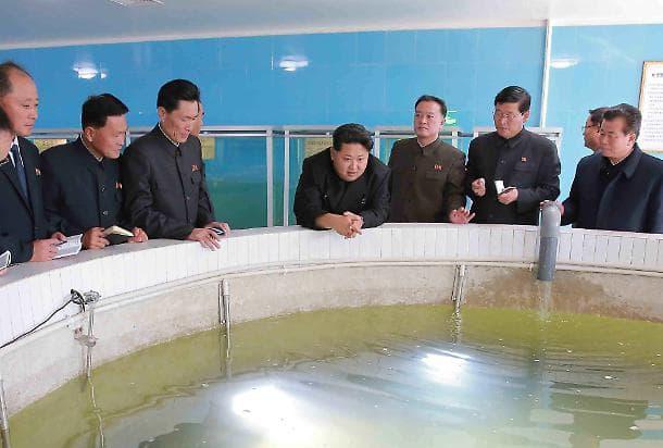 Aerei Da Caccia Corea Del Nord : Corea del nord gli usa schiereranno caccia f in
