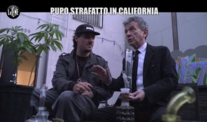 pupo marijuana california