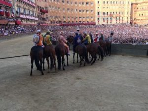 Palio di Siena, the horse Raol died after a ruinous fall