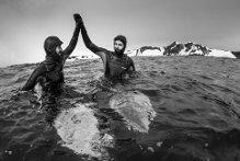 Surf. Cavalcare un'onda in Antartide, l'impresa di Navarro