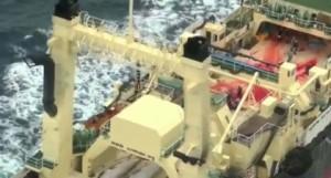 Baleniera giapponese con tre cetacei squartati a bordo