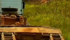 Brasile, bus contro trattore: 14 morti