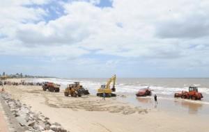 Uruguay, capodoglio lungo 16 metri trovato morto in spiaggia