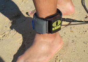 Squali, una cavigliera elettrica per prevenire gli attacchi mortali