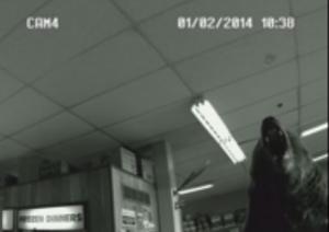 Alaska, orso nel negozio: la telecamera di sorveglianza lo riprende