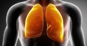 Anche i polmoni sentono gli odori, non è solo questione di naso...