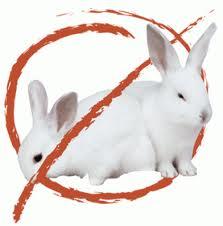 Brasile. Sperimentazione animale vietata per testare cosmetici e profumi