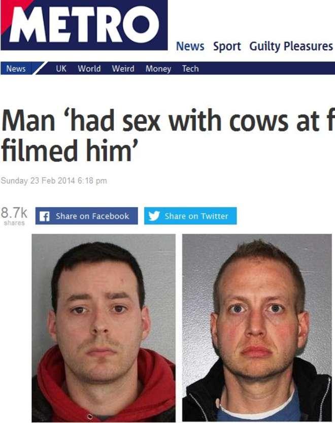 Fa sesso con una mucca e l'amico lo filma. Arrestati
