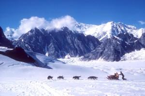 Roberto Aldovini, 340 km di corsa tra i ghiacci dell'Alaska
