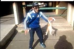 Francia, getta il gatto contro il muro e si filma: condannato a 1 anno