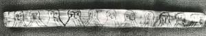 """Codice vichingo di 900 anni fa, segreto svelato: il messaggio è """"baciami"""""""