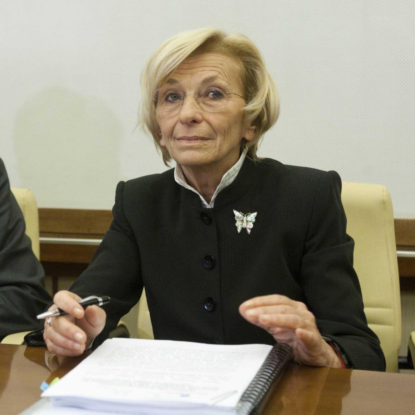 Senato -  commissioni esteri riunite