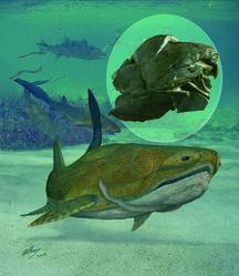Il primo volto fu di un pesce vissuto 400 milioni di anni fa