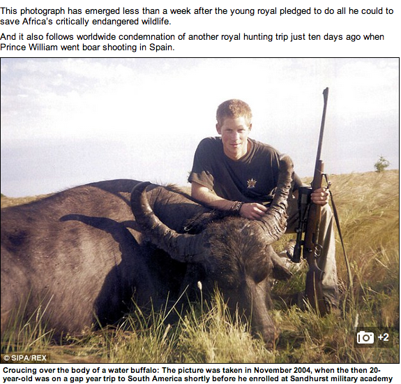 Principe Harry in posa con bufalo morto: la foto che imbarazza Buckingham Palace