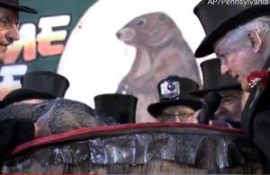 La marmotta ha sentenziato: negli Usa farà freddo ancora per 6 settimane