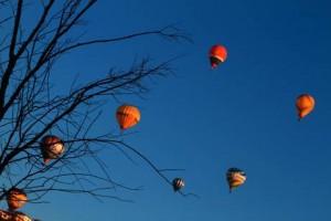 Azzanello (Cremona). Mongolgiera, atterraggio di emergenza: urta albero e cade