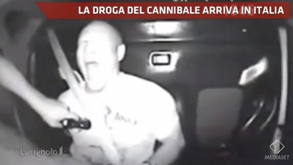 Lucignolo la droga del cannibale arriva in italia foto - Sali da bagno droga ...