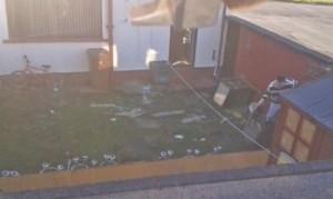 Afferra il suo cucciolo di cane e lo lancia sul cemento in giardino