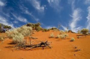 L'Outback australiano