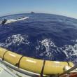 Canale Sicilia, 257 migranti soccorsi10