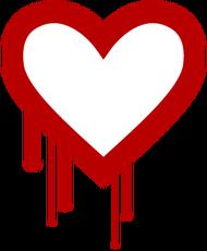 Internet, password a rischio: bug Heartbleed minaccia carte credito, conti, Fb
