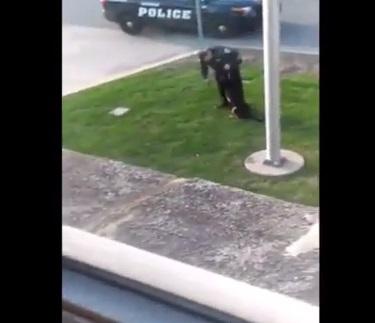 Usa, poliziotto picchia cane antidroga. Video virale sul web