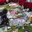 Michael Jackson moriva 5 anni fa: fan spargono 15 rose sulla tomba07