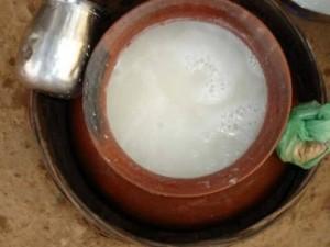 India: birra naturale estratta dalle foglie degli alberi... ma non è alcolica