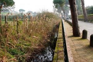 Dolo (Venezia), con l'auto nel canale: passante si spoglia, si tuffa, la salva