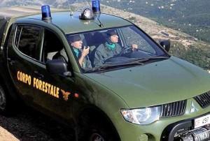 Riforma P. A., polizia penitenziaria e forestali assorbiti da altri corpi