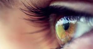 Mini-retina costruita in laboratorio: reagisce alla luce come un occhio umano