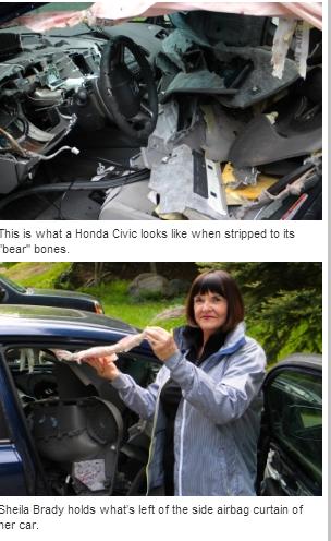 Usa, orso entra in u'auto alla ricerca di cibo e distrugge gli interni