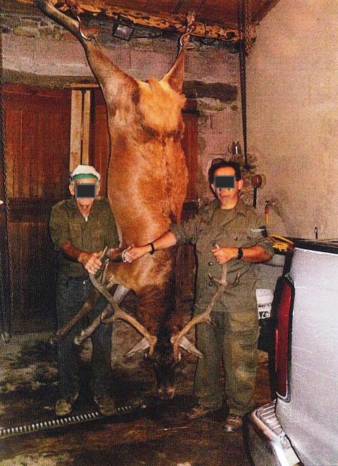 Selfie con cervi e cinghiali uccisi: bracconieri nei guai FOTO
