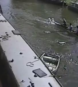 Cigno pericoloso sul fiume Cambridge: attacca i turisti - VIDEO