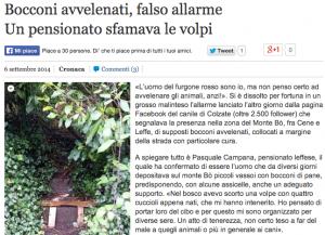 """Bergamo, """"bocconi per avvelenare cani"""". Ma era un pensionato che sfamava volpi"""