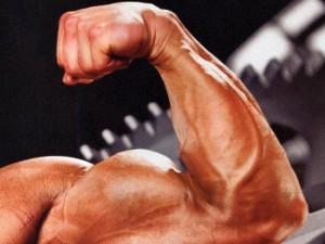 Doping, 4 noti body builder indagati per traffico di anabolizzanti: uno arrestato