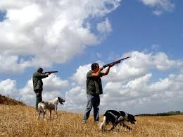 Brindisi, cacciatore spara ad una lepre ma ferisce il compagno