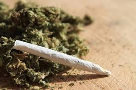 Cannabis, consumo in aumento tra adolescenti: la fuma quasi uno su quattro