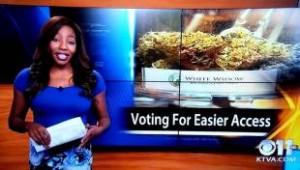 """Notizia sul Cannabis Club Alaska, reporter si dimette in diretta: """"E' mio, fanculo a tutti"""""""