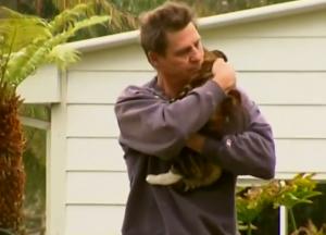 Gatto eroe in Australia: sveglia il padrone che dorme e lo salva dalla villetta in fiamme