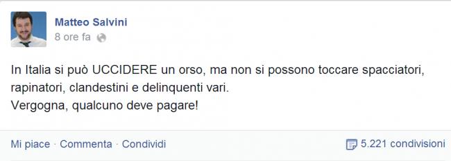 """Daniza, Salvini su Fb: """"In Italia si uccide un orso ma non si toccano delinquenti"""