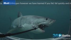 Squalo bianco prova a divorarla: telecamera GoPro finisce sul fondo dell'oceano