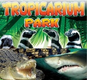 Un posto al parco per dare da mangiare ai serpenti: si propongono in 470