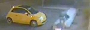 Mestrino (Padova): carica a bordo dell'auto il vaso di fiori di un negozio