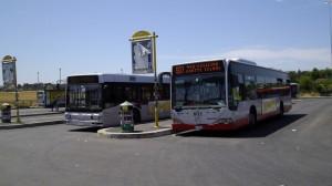 Roma, 15enne palpeggiata in pieno giorno sul bus: nessuno la aiuta